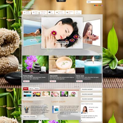 Spa joomla theme
